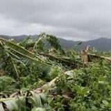 Solicitud de ayuda de FEMA para ocho municipios por Erika