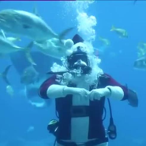 Santa Claus sorprende en acuario