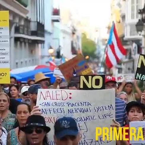 Marchan en contra del Naled