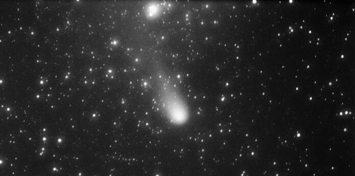Cometa 21P fotografiado desde Caguas. (Alex Guadalupe / Sociedad de Astronomía del Caribe)