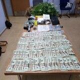 Ocupan 15 plantas de marihuana en allanamiento en Gurabo