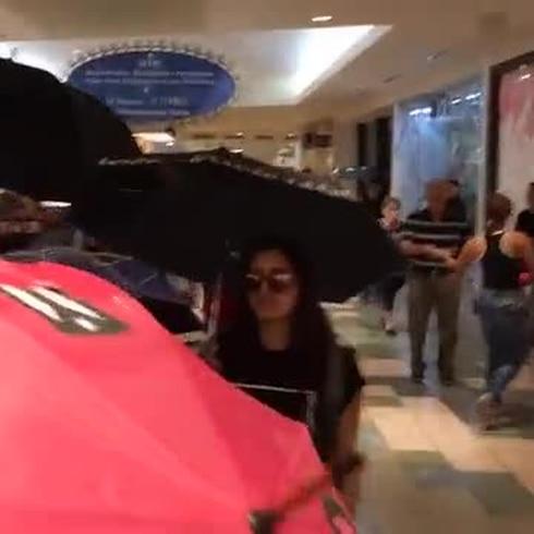 Manifestantes invaden un centro comercial