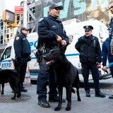 Denuncian falta de diversidad en la policía estatal de Nueva York