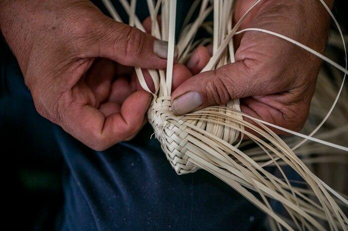 Ángel Luis viaja a Isabela y Cabo Rojo en busca de la palma yarey, cuyas hojas utiliza como material principal para sus creaciones.