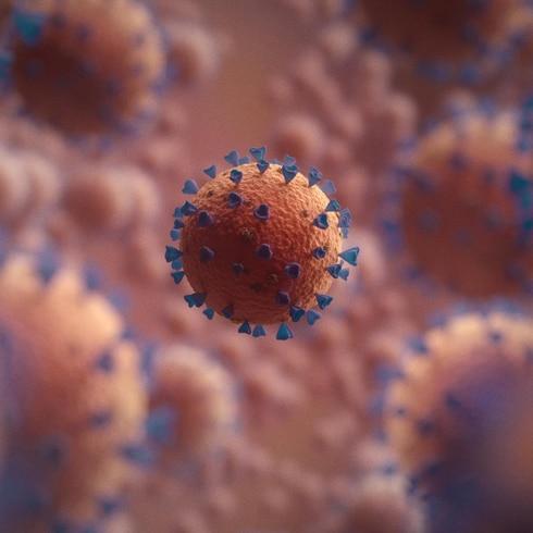 El coronavirus puede afectar el cerebro según un estudio