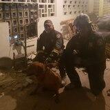 Policías rescatan perro atrapado entre dos paredes