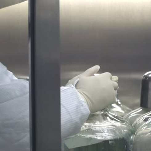China: lo que se sabe del caso de peste bubónica