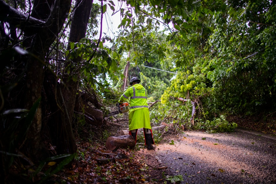 Luquillo Emergency Management personnel clear Highway 992 for a tree that fell on the pavement and damaged electrical wiring.