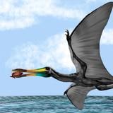Descubren fósiles de un reptil volador que vivió hace 135 millones de años