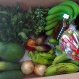 Trujillo Alto repartirá más cajas con productos agrícolas gratis