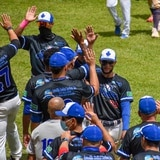 Tiburones de Aguadilla obtienen el último espacio en las finales de sección en el béisbol Doble A