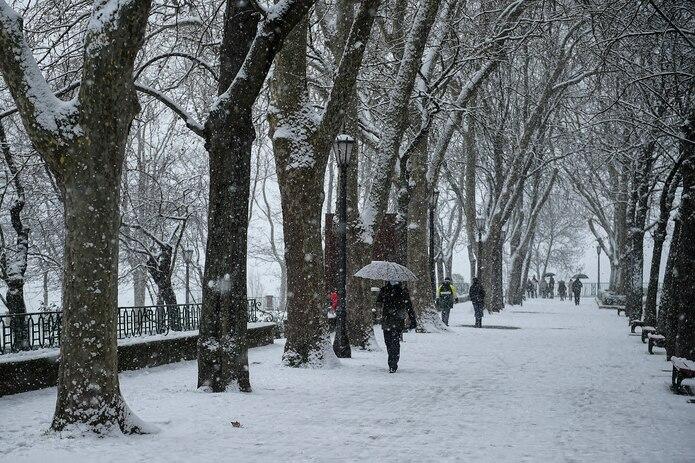 El ayuntamiento dijo en una evaluación preliminar que al menos 150,000 de los 800,000 árboles de Madrid cayeron bajo el peso de la nieve.