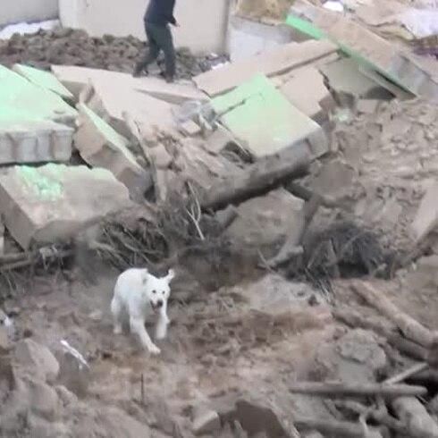 Nueve muertos en Turquía tras un sismo de 5,7 en Irán