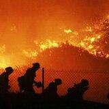 Impactantes imágenes del fuego forestal en California