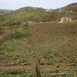 Gobierno anuncia acuerdo para impulsar el sector agrícola