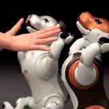 """Sony presenta versión """"policía"""" de su perro-robot"""