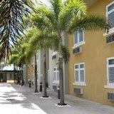 Bajo fuego las operaciones del hotel Treasure Island en Cidra