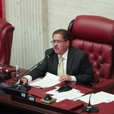 Delegación del PPD en el Senado endosa a José Luis Dalmau para presidir la Pava