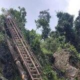 Rescatan turista que sufrió caída en área boscosa de Naguabo