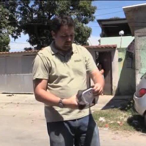 Brasil libera mosquitos con bacteria para luchar contra el dengue