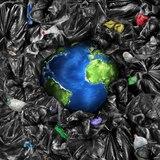 ¿Qué impacto ha tenido la pandemia en el medioambiente?