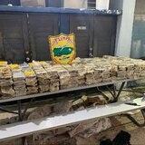 Ocupan cargamento millonario de cocaína en costa de Vega Alta
