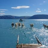 Groenlandia se derrite: foto muestra la gravedad del cambio climático