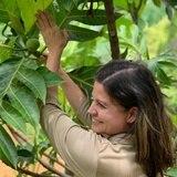 Brindan ayuda a productores locales de alimentos