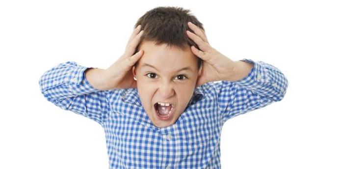 Pero, por regla general, este comportamiento se va a controlar a medida que la criatura avanza en su aprendizaje. (Shutterstock)