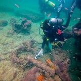 Arqueólogos identifican restos de barco con esclavos mayas