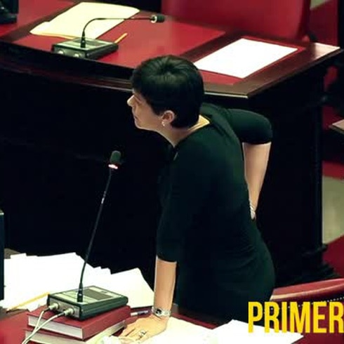 Sesión del Senado sobre depósito de cenizas en Peñuelas
