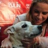 Carmen Yulín lamenta muerte de su perro Benicio del Toro