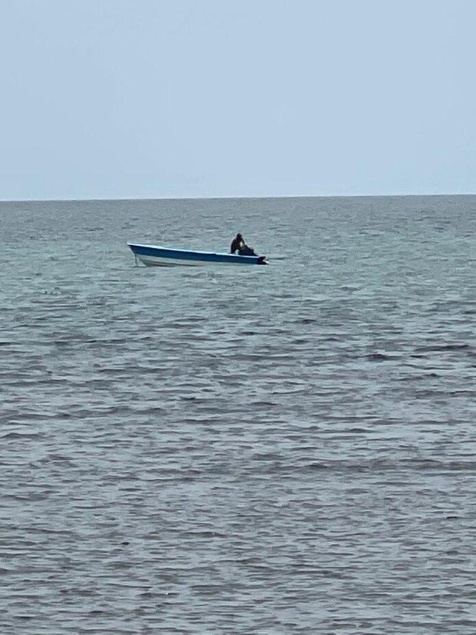 La Unidad Marítima de Cabo Rojo ocupó varios fardos con cocaína y arrestó a uno de los contrabandistas.