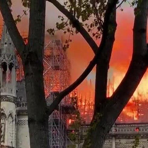 ¿Por qué se quemó la catedral de Notre Dame?
