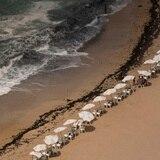 11 personas mueren ahogadas en playa de Egipto intentando salvar a una de ellas