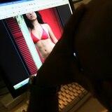 Industria porno le saca provecho a la cuarentena