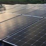 Acusan a presidente de compañía de placas solares por esquema de sobornos