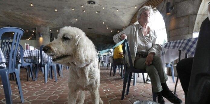 Loni Dantzler, de San Francisco, aquí con su perro Zola.