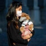 Perros y gatos no pueden transmitir el coronavirus