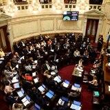 Ley de aborto se trata en el Senado argentino tras aprobarla los Diputados