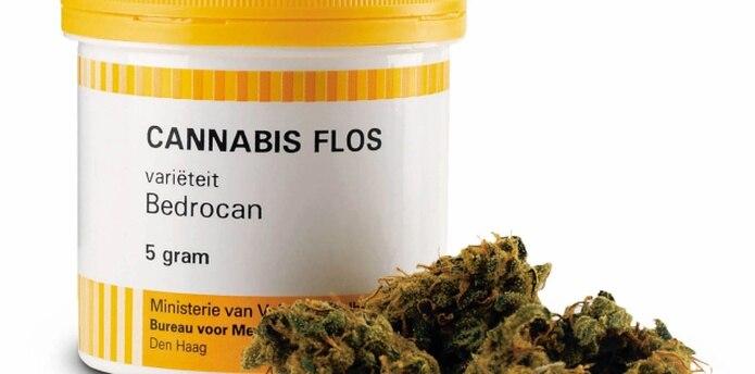 Se encargará de emitir licencias para el cultivo de marihuana con fines medicinales o religiosos. (Archivo)