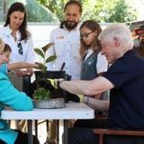 Bill y Hillary Clinton siembran uvas playeras en Fajardo