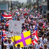 Miles marchan por la prohibición de las peleas de gallos