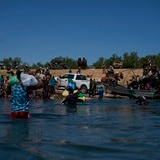 """Renuncia el enviado especial de Estados Unidos a Haití por el """"trato inhumano"""" a los migrantes"""