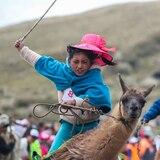 Inusual carrera de niños montados en llamas en los Andes