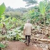 Habrá ayuda para agricultores por daños causados por Erika