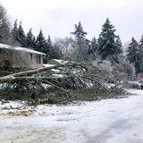 Tormenta invernal deja sin luz a miles de personas en el noroeste de Estados Unidos
