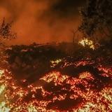 """Huyen de volcán en Congo: """"El fuego bajó hasta aquí"""""""