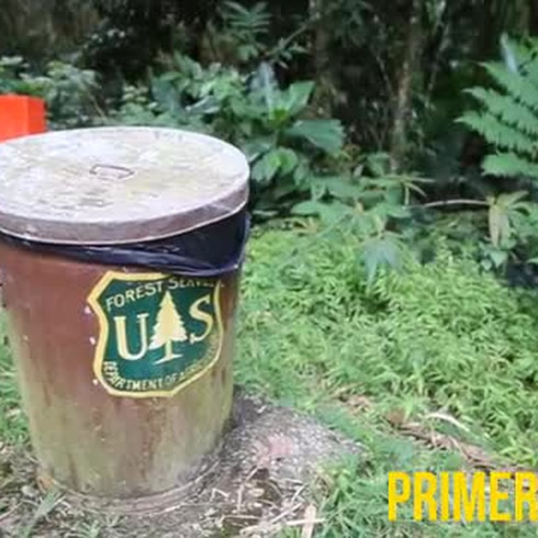 Rescatan a turistas perdidos en el Yunque