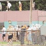 Apuñalan confinado en nuevo incidente en cárcel de Arecibo